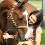 Učíme se rozumět koním