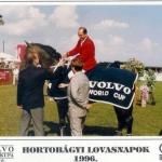 Labe Jeff LB Tech - Kůň roku 1996, vítěz Grand Prix v Maďarsku